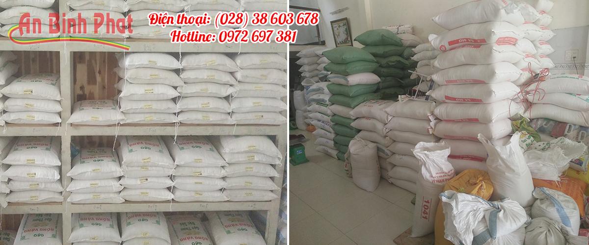 gạo từ thiện an bình phát