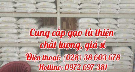 cung cấp gạo từ thiện