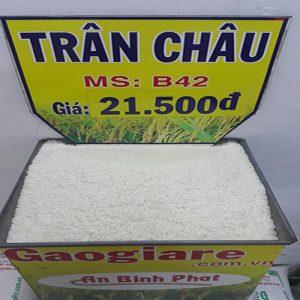 gạo trân châu